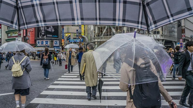 面接時の傘の取り扱い方・置き方~色は?ビニール傘はどう?置き忘れた場合は?